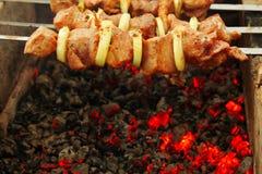 Shashlik on  live coals Stock Images