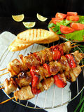 Shashlik made of meat with vegetables Royalty Free Stock Photo