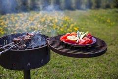 Shashlik mariné préparant sur un gril de barbecue au-dessus de charbon de bois Image libre de droits