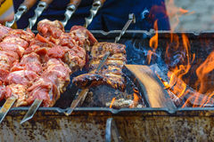 Shashlik and ribs on the brazier Stock Image