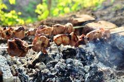 Shashlik, shish kebab, зажаренное мясо Стоковая Фотография RF