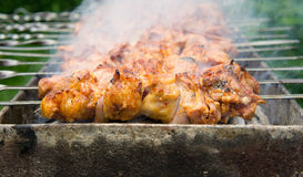 Shashlik - shish kebab Royalty Free Stock Image