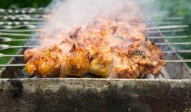 Shashlik - Shish Kebab Royalty Free Stock Image