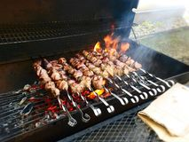 Shashlik Stock Image