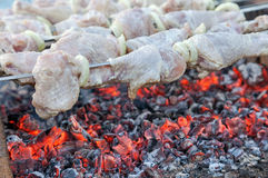 Shashlik (shish kebab) Royalty Free Stock Photo
