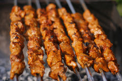 Shashlik - traditional georgian barbecue prepared Royalty Free Stock Photos