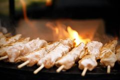 Shashliks on skewers are fried on an open fire royalty free stock photos