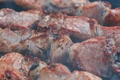Shashlyk να προετοιμαστεί BBQ στη σχάρα Καπνός πέρα από ψημένος keb Στοκ Εικόνες