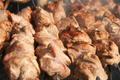 Shashlyk dos kebabs da carne em um BBQ Foto de Stock