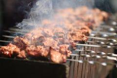Shashlyk irritável 3 da carne imagem de stock