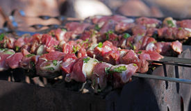 Shashlyk - traditional Russian barbeque. Russia Royalty Free Stock Photo