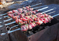 Shashlyk - traditional Russian barbeque. Russia Royalty Free Stock Photos