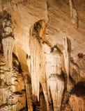 Shasta jeziorni Caverns Obrazy Stock