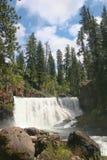 Shasta Lake Cascades royalty free stock image