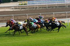 Shatin Racecourse, Hong Kong 02. Shatin Racecourse, Hong Kong. The horses are racing by jockeies Stock Photos
