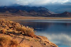 Shatsagay nuur lake in mongolia Royalty Free Stock Photo