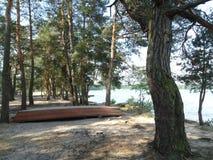 Shatsk湖银行  库存图片