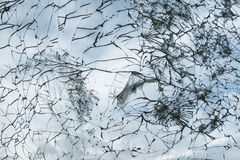 Shattered glass. Of old railway car stock photography