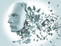 Shattered Head side view Royalty Free Stock Photo