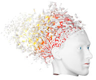 Shattered Head side view Royalty Free Stock Photography