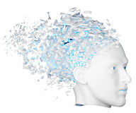 Shattered Head side view Stock Photography