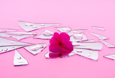 Shattered Romance in Pink Pieces Stock Images