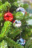 Shatterproof ball ornament on Christmas Tree Stock Images