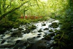 Shaugh prior ,dartmoor national park devon. Dartmoor river,shaugh prior ,dartmoor national park devon royalty free stock photo