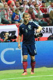 Shaun Maloney Stock Photography