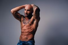 Shaved head, muscular male with tattoos on his torso over grey v. Studio portrait of shirtless shaved head, muscular male with tattoos on his torso over grey stock photography
