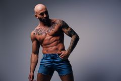 Shaved head, muscular male with tattoos on his torso over grey v. Studio portrait of shirtless shaved head, muscular male with tattoos on his torso over grey royalty free stock photo