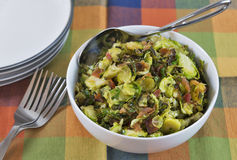 Shaved roasted brussels sprouts with crumbled bacon. A bowl of delicious roasted shaved brussels sprouts made with olive oil and crumbled bacon makes a healthy Stock Photography