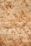 Shavings кедра деревянные Стоковые Изображения RF