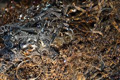shavings металла Стоковые Фото