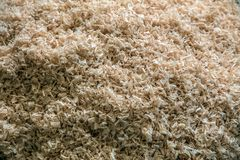 Shavings. Wood timber construction material for background and t stock image
