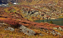 Shavlinskoe lake in the Altai mountains Royalty Free Stock Photo