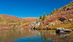 Shavlinskoe lake in the Altai mountains Royalty Free Stock Image