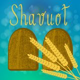 shavuot Концепция Judaic праздника Таблетки договорённости Уши пшеницы бесплатная иллюстрация
