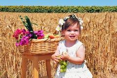 shavuot праздников еврейское стоковая фотография