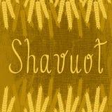shavuot Concetto della festa giudaico cristiana Orecchie di frumento Fotografie Stock