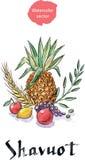 Shavuot holiday symbols. Royalty Free Stock Photos