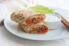 Shawarma with chicken, vegetables and herbs on a white plate stock image