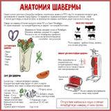 Shawarma` s Anatomie Royalty-vrije Stock Foto