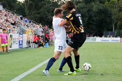 Shawn Ferguson, Charleston Battery Royalty Free Stock Images