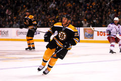 Shawn Thornton Boston Bruins Royalty Free Stock Images