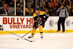 Shawn Thornton Boston Bruins Stock Photo