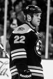 Shawn Thornton Boston Bruins Stock Photos