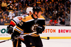 Shawn Thornton Boston Bruins Stock Images