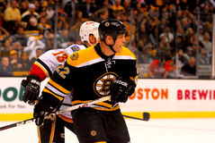Shawn Thornton Boston Bruins Stock Photos