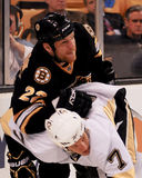 Shawn Thornton Boston Bruins Stockbild